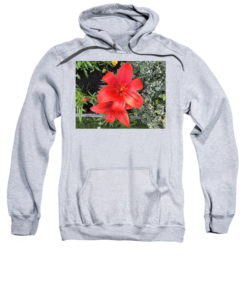 Sunbeam On Red Day Lily Sweatshirt