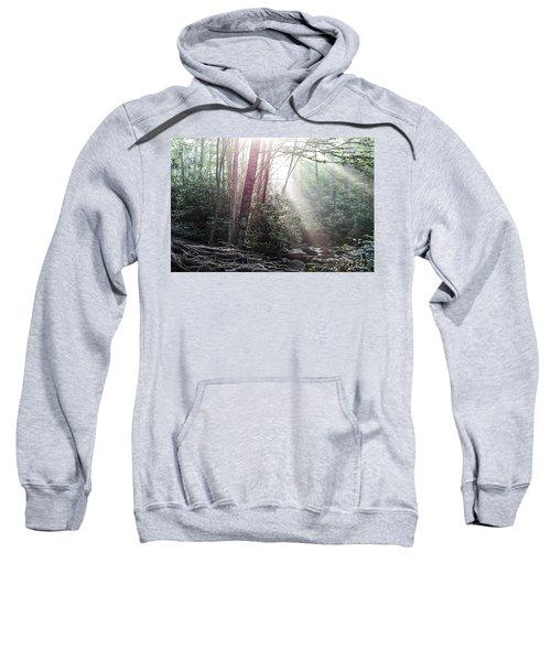 Sunbeam Streaming Into The Forest Sweatshirt