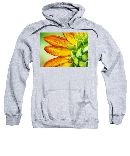Sunflower Macro 1 Sweatshirt