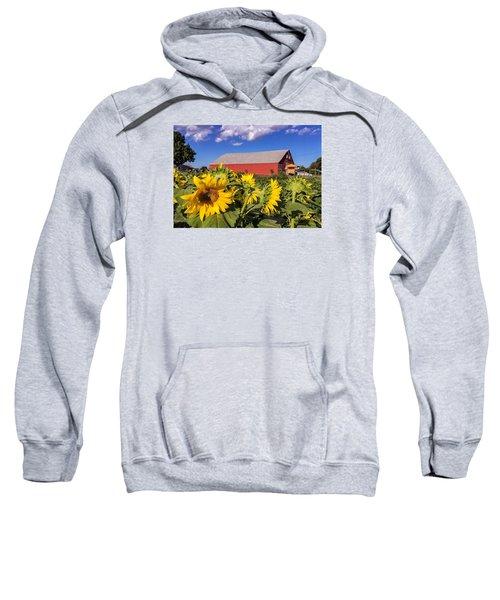 Sunflower Red Barn Sweatshirt