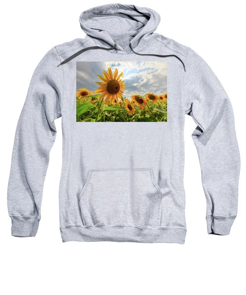Sunflower Star Sweatshirt