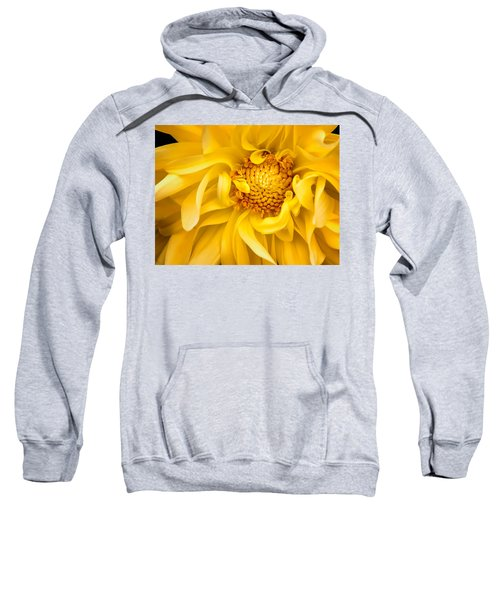 Sunflower Yellow Sweatshirt