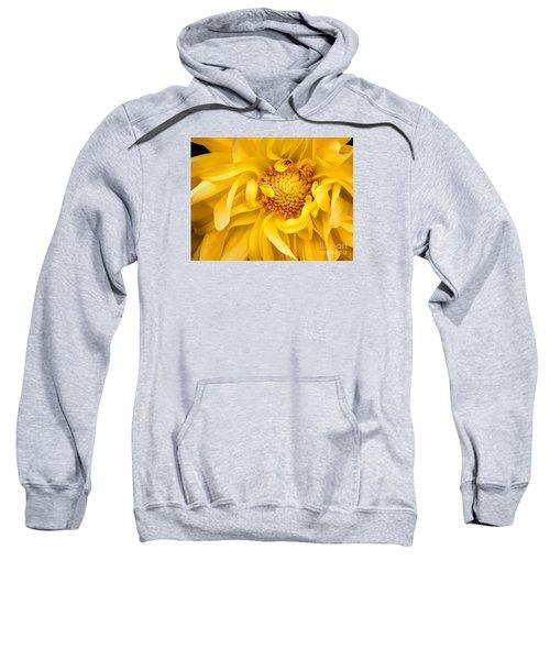 Sunflower Yellow Sweatshirt
