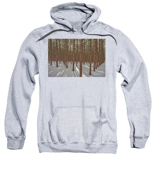 Sunlight Filtering Through A Pine Forest Sweatshirt