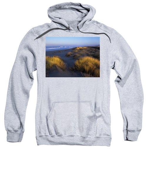 Sunlight On The Beach Grass Sweatshirt