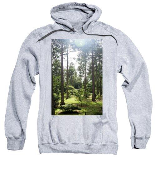 Sunlight Through The Trees Sweatshirt