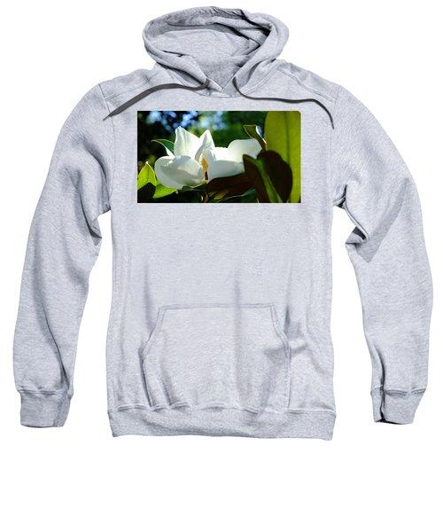 Sunlit Bloom Sweatshirt