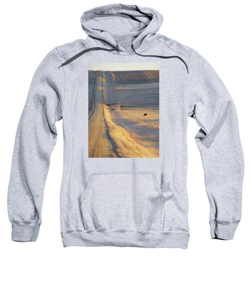 Sunlit Road Sweatshirt