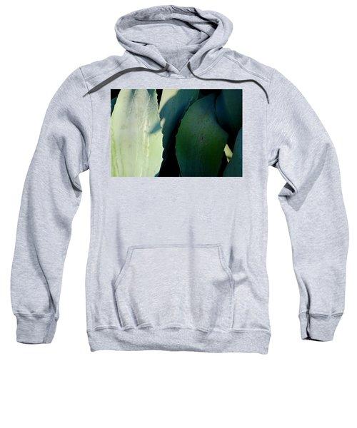 Sunlit Wild Agave  Sweatshirt