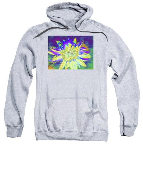 Sunpopped Sweatshirt