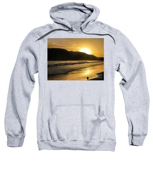 Sunrise Surprise Sweatshirt