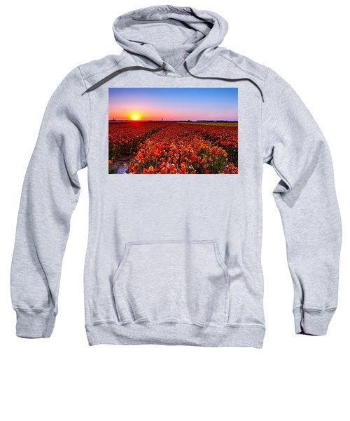 Sunset At Nuriot Field Sweatshirt
