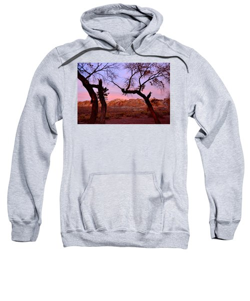 Sunset At The Swell Sweatshirt