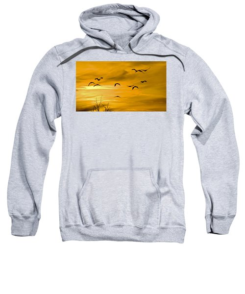 Sunset Fliers Sweatshirt