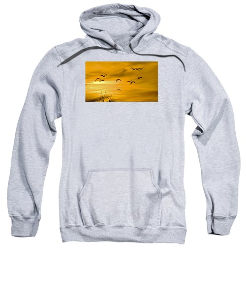 Sunset Fliers Sweatshirt