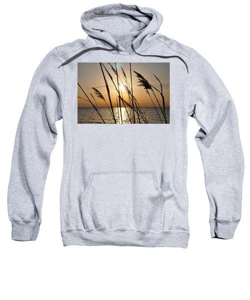 Sunset Through The Dune Grass Sweatshirt