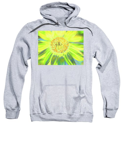 Sunshake Sweatshirt