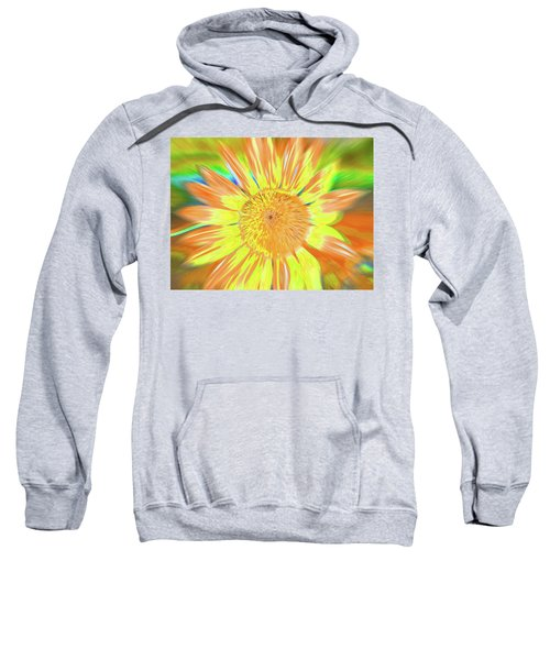 Sunsoaring Sweatshirt