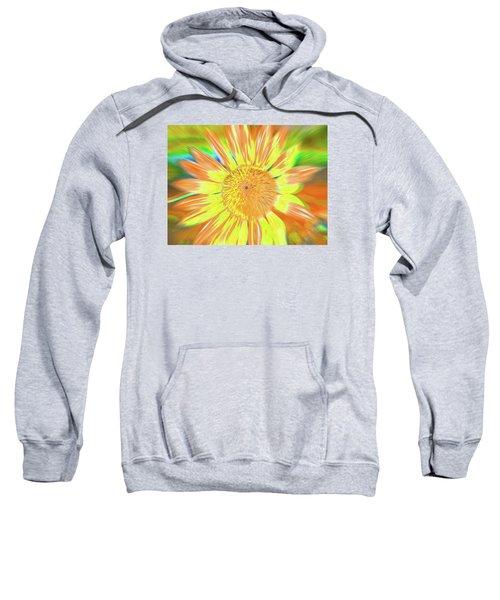 Sunsoaring Sweatshirt