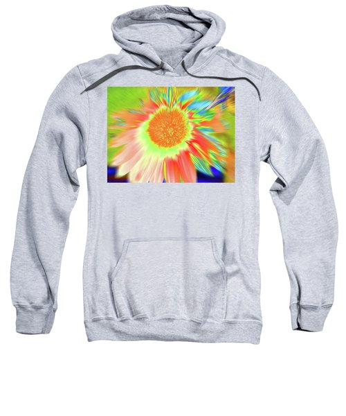 Sunswoop Sweatshirt