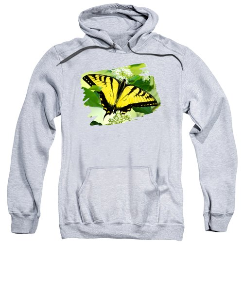Swallowtail Butterfly Feeding On Flowers Sweatshirt by Christina Rollo