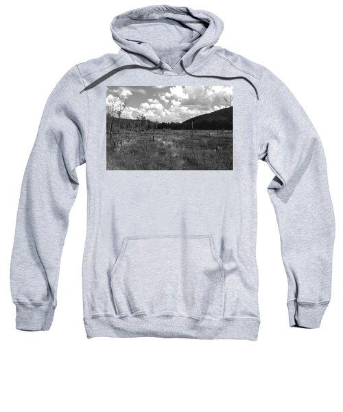 Swampoem Sweatshirt