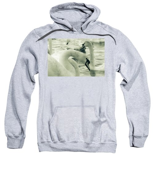 Swan In Water Sweatshirt
