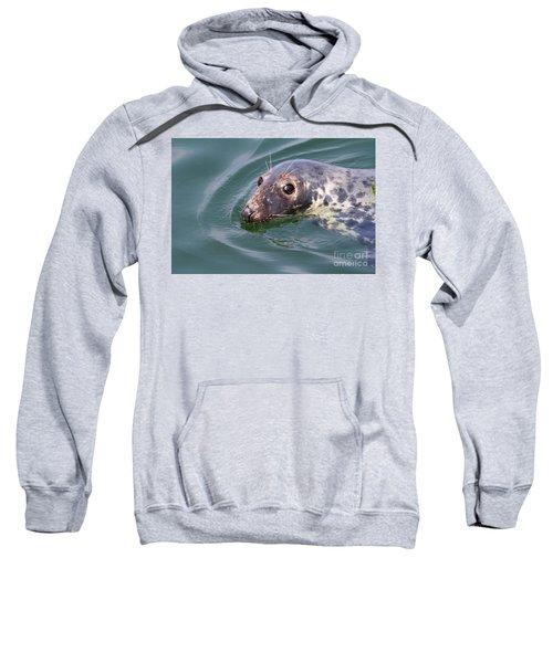 Sweet Seal Sweatshirt