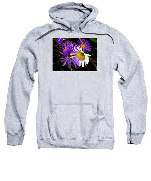 Sweethearts Sweatshirt