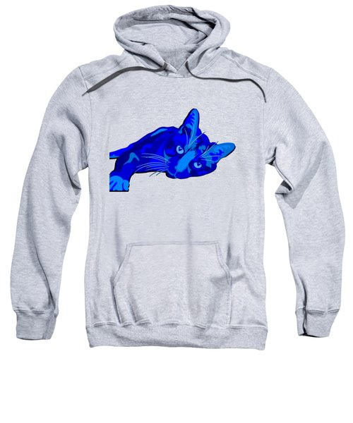 Sylvia Blue Sweatshirt