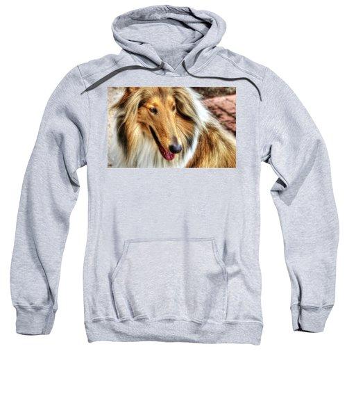 Taffy Collie Sweatshirt