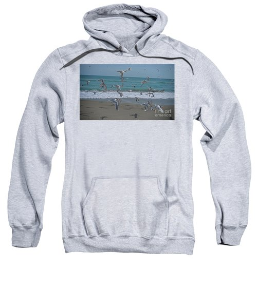Take Flight Sweatshirt