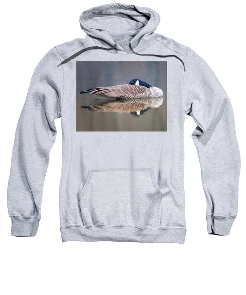 Taking A Nap Sweatshirt