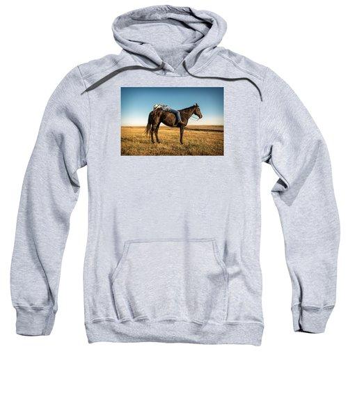Taking A Snooze Sweatshirt by Todd Klassy