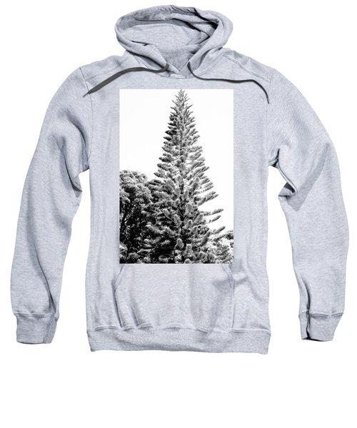 Tall Tree Bw - Lan11 Sweatshirt
