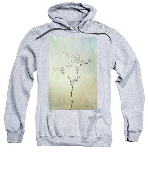 Tall Tree Sweatshirt