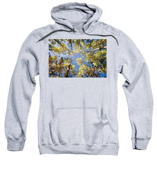 Look Up Sweatshirt