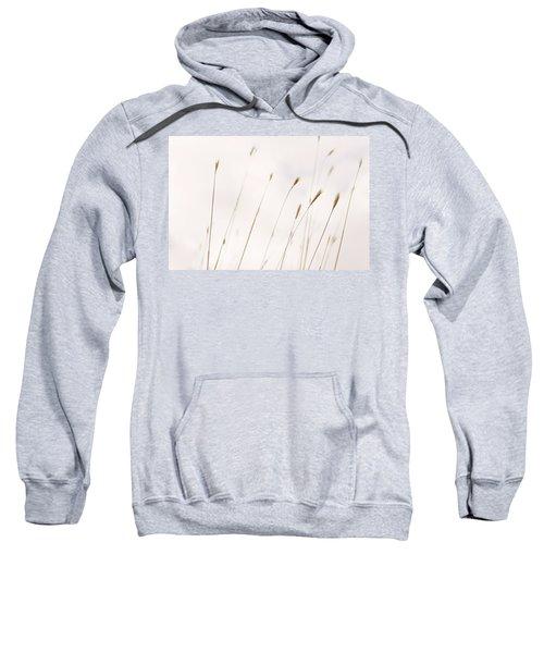 Tall Wild Grass Against A Cloudy Sky Sweatshirt