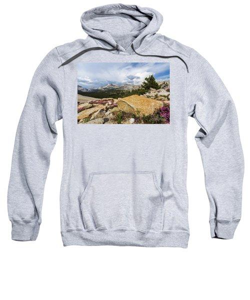 Tanya Overlook  Sweatshirt