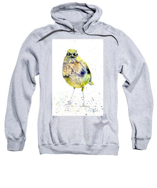 Teenage Robin Sweatshirt