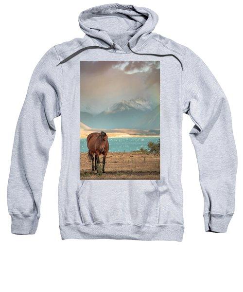 Sweatshirt featuring the photograph Tekapo Horse by Chris Cousins
