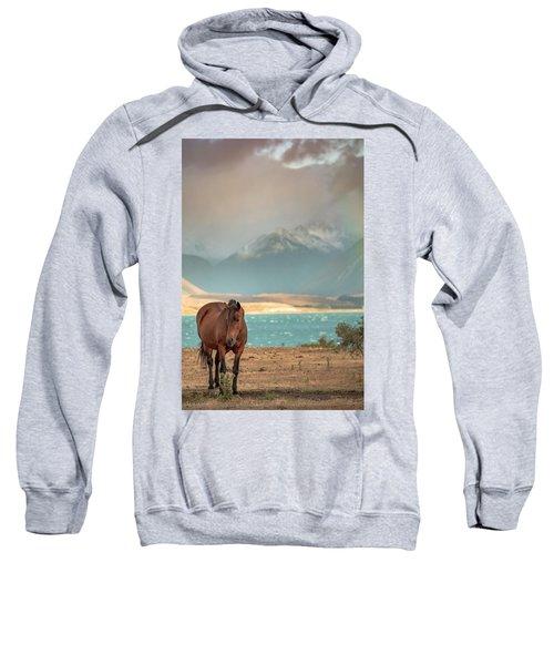 Tekapo Horse Sweatshirt