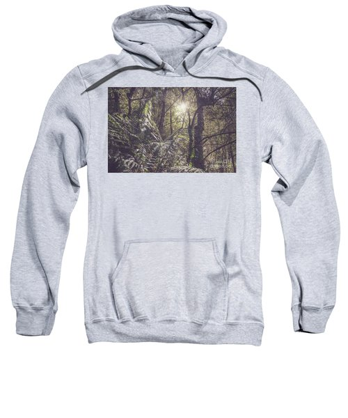 Temperate Rainforest Canopy Sweatshirt