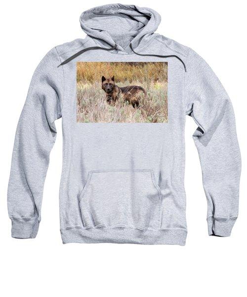 Teton Wolf Sweatshirt
