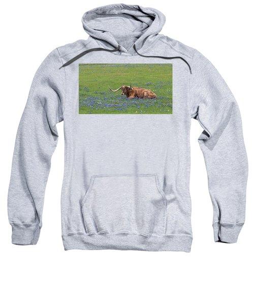 Texas Longhorn And Bluebonnets Sweatshirt