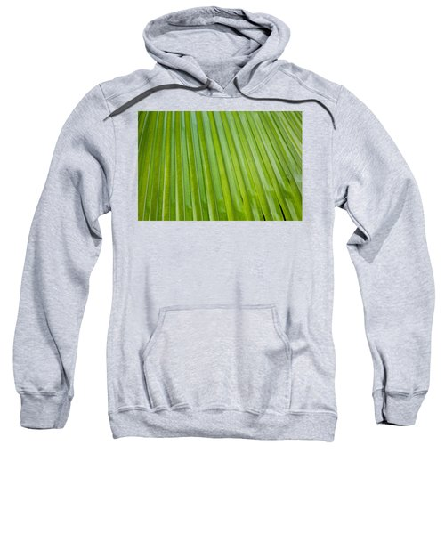 Texture 330 Sweatshirt