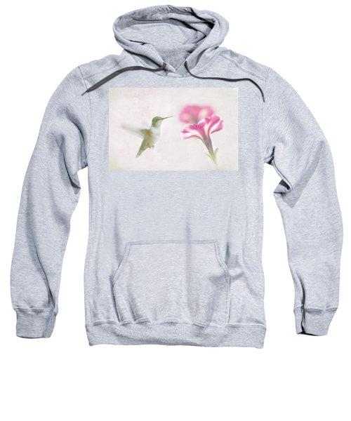Textured Hummer Sweatshirt