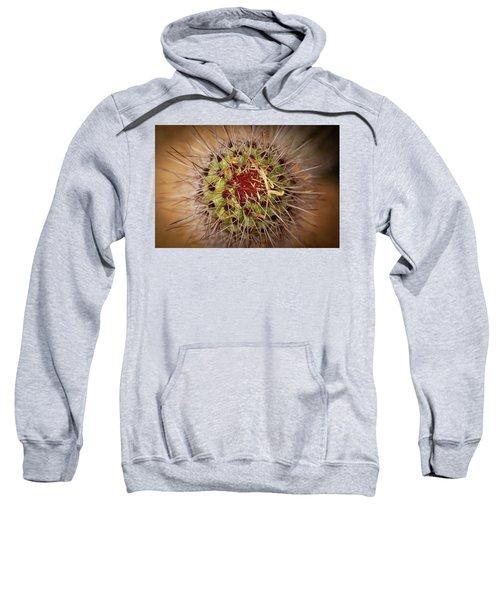 Textures Of Arizona Sweatshirt