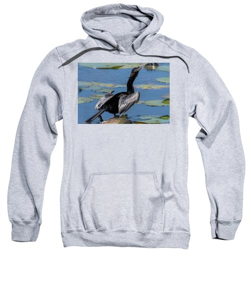The Bird, Anhinga Sweatshirt