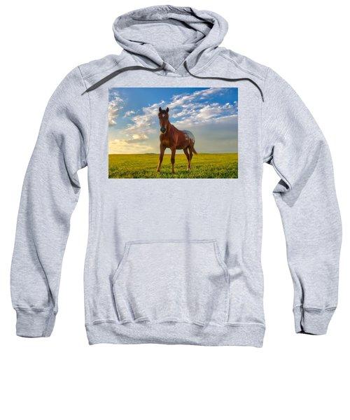 The Appy Sweatshirt